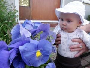 Plockar blommor
